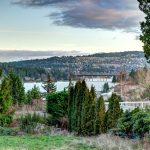 Lake Washington View